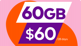 60GB for 60 dollars/28days
